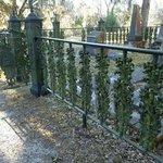 Lovely ironwork around burial plots