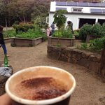 Exceptional coffee amongst the luscious garden
