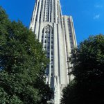 View from the Fifth Avenue entrance