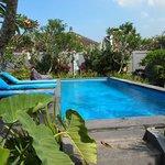 Prachtig zwembad op binnenterrein.