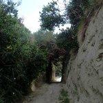 Дорога к Pizzi Bianci