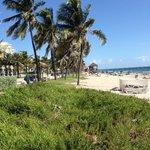 Beach of Deerfield