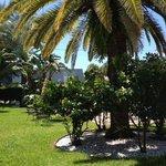 Tropic Isle Resort