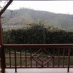 View from the verandah