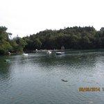 Les rives de l'Odet