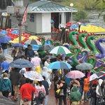 dragon boats, visitors and umbrellas