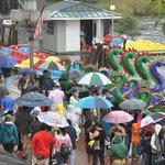 dragon boats, visitors and umbrellas