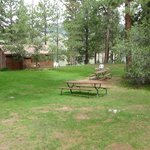 Cabin 1 and Common Area
