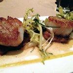 Seared Sea Scallops: Potato Purée, Pork Belly, Fennel, Apple, and Honey Coriander Glaze