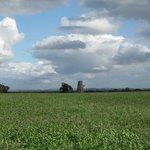 Dalek in the fields