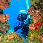 Doorkijkje in het koraal op Klein Curacao