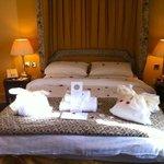 Bed in Suite Feb 2011