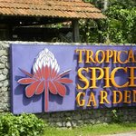 Spice Garden and Nyonya Cooking