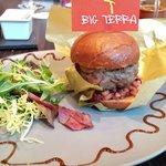 Φωτογραφία: Restaurant Terra