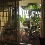 Our luscious view of the lanai and garden