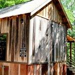 Camp Cabin #5