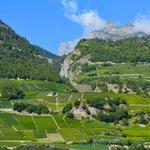Balkon Sicht auf die Weingärten von Saillon
