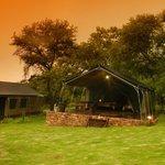 Foto de Bushwillow Tented Camp