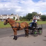 Horse and cart passing by