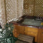 Susan B Anthony private spa tub enclosure