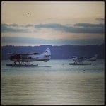 Lago de Rotorua