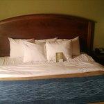 Foto de Comfort Inn