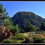 Mont Gerbier (à 10 min)