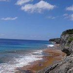 Niue view