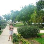 Beautiful central garden