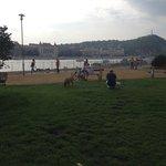 View of the Danube near Leonardo Hotel