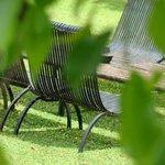 Green & relaxing views