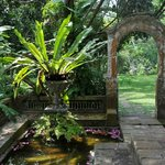 Original archway of the plantation house.
