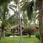 The grounds at Am Samui