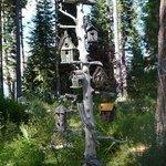 lovely gardens with bird house display & chipmunks running around.