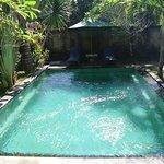 Pretty large pool