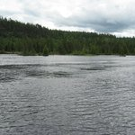 Scenery Around the Lake and areas for great fishing