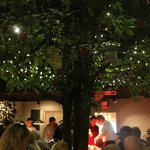 "An artificial oak tree lit with tiny lights ""shelters"" diners at the buffet."