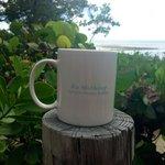 Enjoying morning tea on the terrace