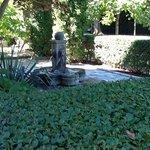 delightful front garden