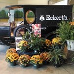 Fall decorations at the Eckert's grocery store
