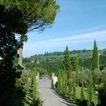 paesaggio che circonda la villa