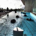 The long pool