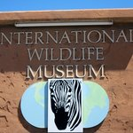 International Wildlife Museum