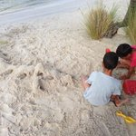 My kids building sandcastles and mountains on the beach