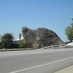 Dawg Rock