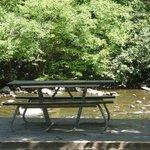 Picnic Table at Metcalf Bottoms Picnic Area