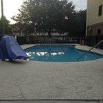 Clean pool
