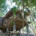 Tree Top Spa- Massage room