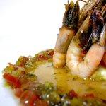 Caribe shrimps