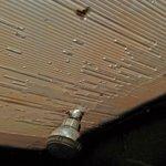 soffitto del bagno: una lamiera di plastica ammuffita